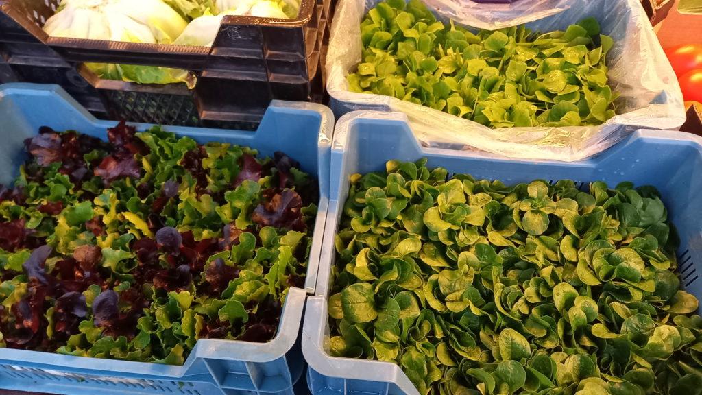 Biogemuese der Biogaertnerei Grünschnabel aus Attenweiler auf dem Wochenmarkt in Ehingen und Munderkingen