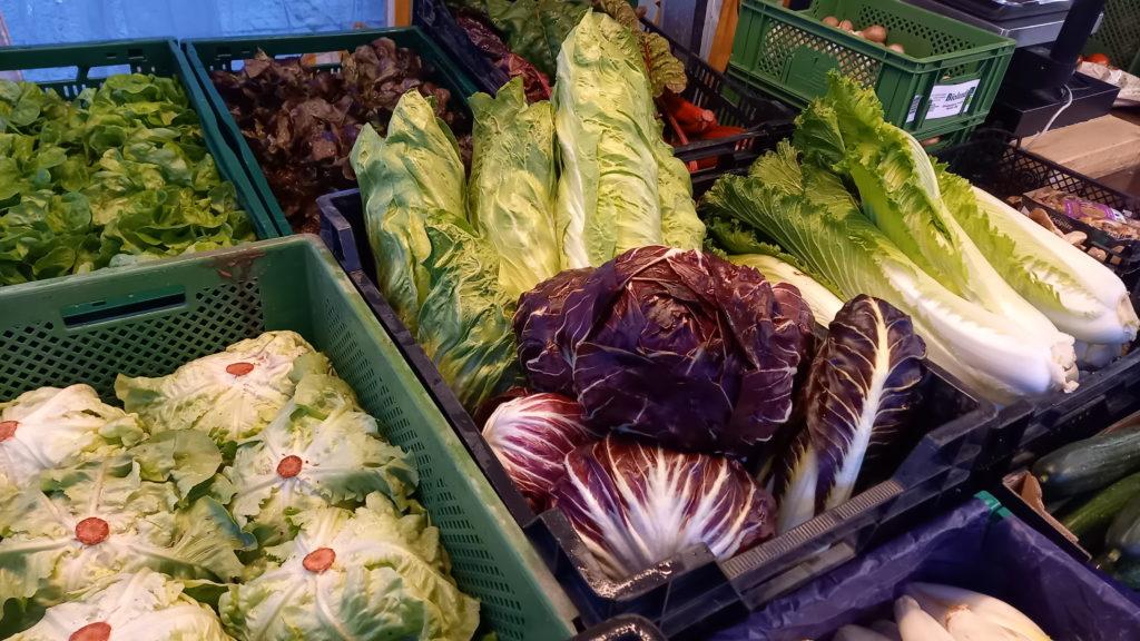Biogemüse der Biogaertnerei Grünschnabel aus Attenweiler auf dem Wochenmarkt in Ehingen und Munderkingen